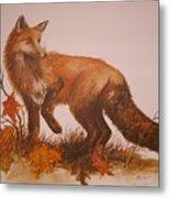 Red Fox Metal Print by Ben Kiger