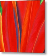 Red Petals Metal Print by Lucy Arnold