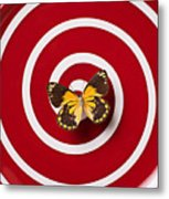 Red Plate And Yellow Black Butterfly Metal Print by Garry Gay