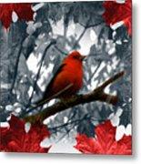 Red Wild Bird Metal Print by Debra     Vatalaro