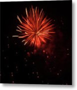 Redburst 2 Metal Print by Vijay Sharon Govender