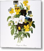 Redoute: Pansy, 1833 Metal Print by Granger