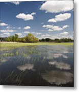 Reflecting Clouds - Jim River Valley Metal Print by Patrick Ziegler