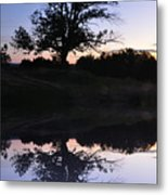 Reflecting Tree Metal Print by Bill Cannon