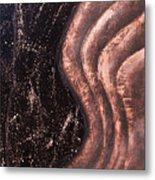 Reverberation Metal Print by Bojana Randall