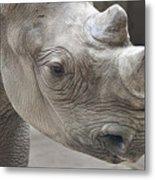 Rhinoceros Metal Print by Tom Mc Nemar