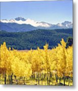 Rocky Mountain Park Colorado Metal Print by James Steele