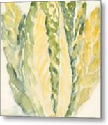 Romaine Metal Print by Linda Bourie
