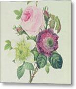 Rose Metal Print by Pierre Joseph Redoute