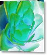 Rose Sea Metal Print by Lynne Furrer