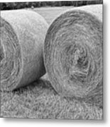 Round Hay Bales Black And White  Metal Print by James BO  Insogna
