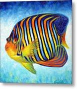 Royal Queen Angelfish Metal Print by Nancy Tilles