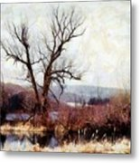 Rustic Reflections Metal Print by Janine Riley
