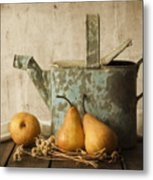 Rustica Metal Print by Amy Weiss