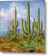 Saguaro Scene 1 Metal Print by Summer Celeste