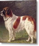 Saint Bernard Metal Print by Heinrich Sperling