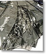 Sarah King Metal Print by Detail of Mayfly Wing