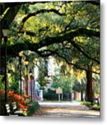 Savannah Park Sidewalk Metal Print by Carol Groenen