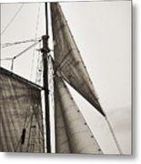 Schooner Pride Tall Ship Yankee Sail Charleston Sc Metal Print by Dustin K Ryan