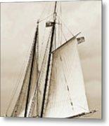 Schooner Sailboat Spirit Of South Carolina Sailing Metal Print by Dustin K Ryan
