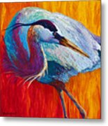 Second Glance - Great Blue Heron Metal Print by Marion Rose
