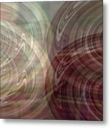Seeing Double Metal Print by Donna Proctor