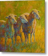 Sheep Trio Metal Print by Marion Rose