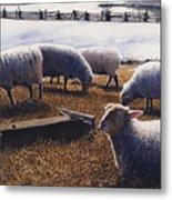 Sheepish Metal Print by Denny Bond