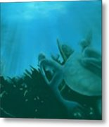 Ship Wreck Metal Print by Charles Parks
