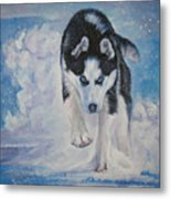 Siberian Husky Run Metal Print by Lee Ann Shepard