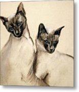 Sibling Love Metal Print by Cori Solomon