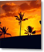 Silhouetted Golfer Metal Print by Dana Edmunds - Printscapes
