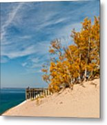 Sleeping Bear Overlook Metal Print by Larry Carr