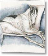 Sleeping Greyhound Metal Print by Charlotte Yealey