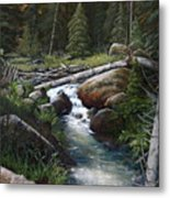 Small Stream In The Lost Wilderness 070810-1612 Metal Print by Kenneth Shanika