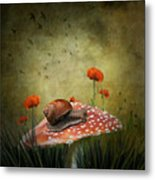 Snail Pace Metal Print by Ian Barber