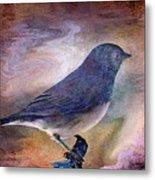 Snowbird Stories... Metal Print by Arthur Miller