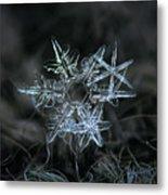 Snowflake Of 19 March 2013 Metal Print by Alexey Kljatov