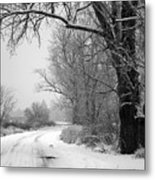 Snowy Branch Over Country Road - Black And White Metal Print by Carol Groenen