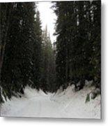 Snowy Pines Metal Print by Silvie Kendall