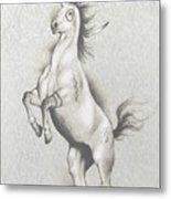 Spirit Horse Metal Print by Robert Martinez