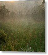 Spring Sunrise In The Valley Metal Print by Dale Kincaid