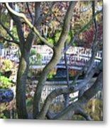 Springtime Bridge Through Japanese Maple Tree Metal Print by Carol Groenen