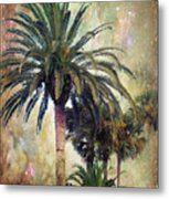 Starry Evening In St. Augustine Metal Print by Jan Amiss Photography