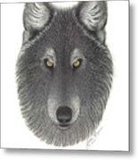 Stepinwolf Metal Print by Jackie Meyers