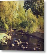 Stepping Stones To My Heart Metal Print by Laurie Search