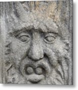 Stone Face Metal Print by Michal Boubin