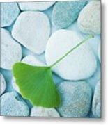 Stones And A Gingko Leaf Metal Print by Priska Wettstein
