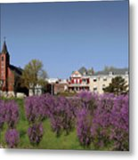 Strawberry Hill Metal Print by Don Wolf