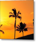 Stretching At Sunset Metal Print by Dana Edmunds - Printscapes